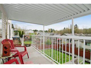 Photo 18: 11746 CREEKSIDE Street in Maple Ridge: Cottonwood MR House for sale : MLS®# V1108414