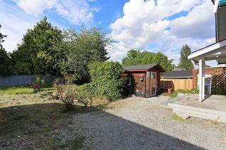 Photo 18: 12637 115 Avenue in Surrey: Bridgeview House for sale (North Surrey)  : MLS®# R2081017