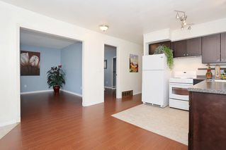 Photo 8: 12637 115 Avenue in Surrey: Bridgeview House for sale (North Surrey)  : MLS®# R2081017