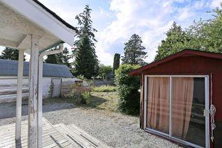 Photo 17: 12637 115 Avenue in Surrey: Bridgeview House for sale (North Surrey)  : MLS®# R2081017