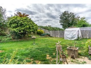 Photo 19: 32566 PANDORA Avenue in Abbotsford: Abbotsford West House for sale : MLS®# R2104290