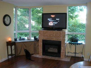 """Photo 5: 204 10082 148 Street in Surrey: Guildford Condo for sale in """"Stanley"""" (North Surrey)  : MLS®# R2172694"""