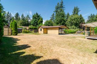 Photo 17: 4049 205A Street in Langley: Brookswood Langley House for sale : MLS®# R2191134
