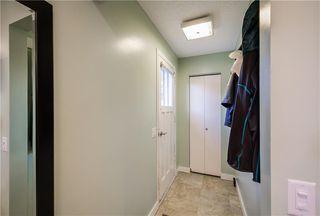 Photo 21: 1347 LAKE SYLVAN Drive SE in Calgary: Bonavista Downs Detached for sale : MLS®# C4197432
