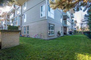 Photo 14: 107 22255 122 Avenue in Maple Ridge: West Central Condo for sale : MLS®# R2324195