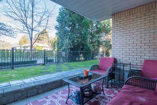 Photo 16: 107 22255 122 Avenue in Maple Ridge: West Central Condo for sale : MLS®# R2324195