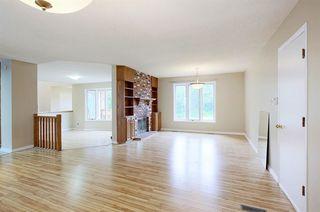 Photo 11: 70 WAKINA Drive in Edmonton: Zone 22 House for sale : MLS®# E4140334