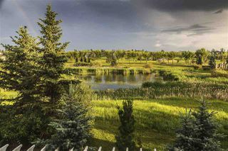 Photo 29: 994 HOLLINGSWORTH Bend in Edmonton: Zone 14 House for sale : MLS®# E4143197