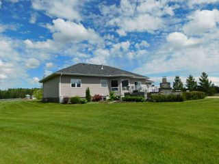 Photo 28: 56503 Rge Rd 231: Rural Sturgeon County House for sale : MLS®# E4163942