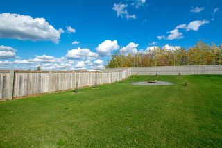 Photo 29: 1251 STARLING DR NW in Edmonton: Zone 59 House Half Duplex for sale : MLS®# E4174556