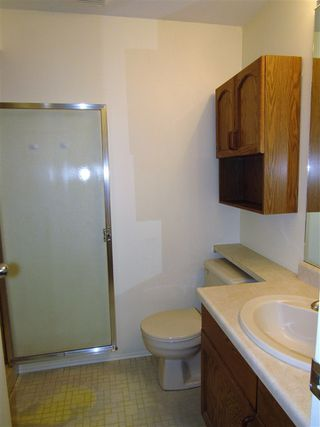 Photo 14: 1920 108 Street in Edmonton: Zone 16 House for sale : MLS®# E4179799