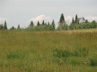 Photo 8: Glenbow RD in Rural Rocky View County: Rural Rocky View MD Land for sale : MLS®# C4215598