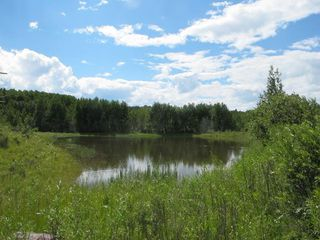 Photo 7: 111 acres Bragg Creek/Priddis Street W: Rural Foothills County Land for sale : MLS®# C4289790