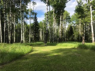 Photo 2: 111 acres Bragg Creek/Priddis Street W: Rural Foothills County Land for sale : MLS®# C4289790