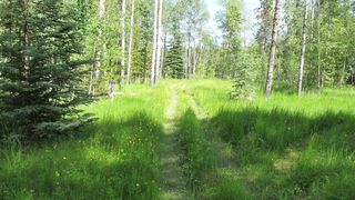 Photo 1: 111 acres Bragg Creek/Priddis Street W: Rural Foothills County Land for sale : MLS®# C4289790