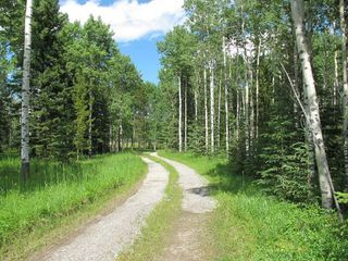 Photo 20: 111 acres Bragg Creek/Priddis Street W: Rural Foothills County Land for sale : MLS®# C4289790