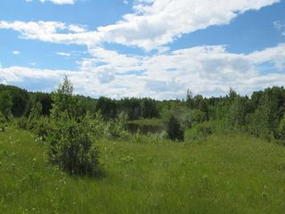 Photo 6: 111 acres Bragg Creek/Priddis Street W: Rural Foothills County Land for sale : MLS®# C4289790