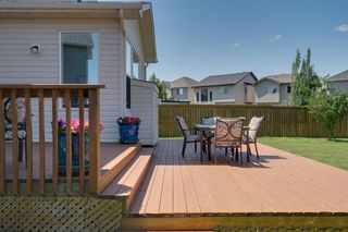 Photo 43: 160 Brightonstone Gardens SE in Calgary: New Brighton Detached for sale : MLS®# A1009065