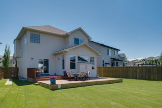 Photo 46: 160 Brightonstone Gardens SE in Calgary: New Brighton Detached for sale : MLS®# A1009065