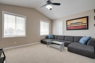 Photo 23: 160 Brightonstone Gardens SE in Calgary: New Brighton Detached for sale : MLS®# A1009065