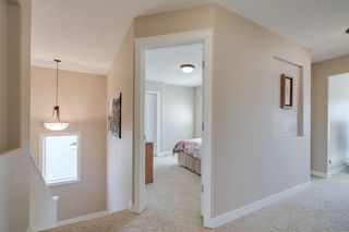 Photo 22: 160 Brightonstone Gardens SE in Calgary: New Brighton Detached for sale : MLS®# A1009065