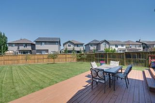Photo 49: 160 Brightonstone Gardens SE in Calgary: New Brighton Detached for sale : MLS®# A1009065