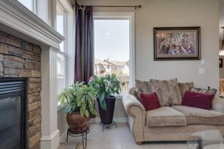 Photo 18: 160 Brightonstone Gardens SE in Calgary: New Brighton Detached for sale : MLS®# A1009065