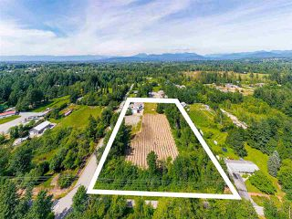 Photo 26: 5880 268 Street in Langley: County Line Glen Valley House for sale : MLS®# R2474668