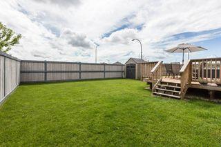 Photo 38: 8991 24 Avenue in Edmonton: Zone 53 House for sale : MLS®# E4207738