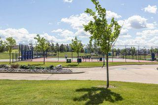 Photo 43: 8991 24 Avenue in Edmonton: Zone 53 House for sale : MLS®# E4207738