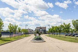 Photo 41: 8991 24 Avenue in Edmonton: Zone 53 House for sale : MLS®# E4207738