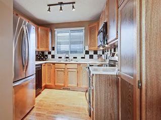 Photo 12: 8 CEDARGROVE Way SW in Calgary: Cedarbrae Detached for sale : MLS®# A1025701