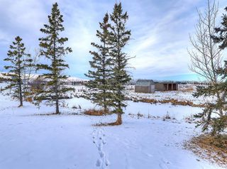 Photo 40: 263087 Rge Rd 293 in Rural Rocky View County: Rural Rocky View MD Detached for sale : MLS®# A1055802