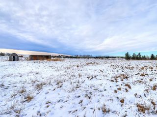 Photo 44: 263087 Rge Rd 293 in Rural Rocky View County: Rural Rocky View MD Detached for sale : MLS®# A1055802