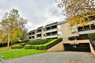 "Photo 20: 113 10221 133A Street in Surrey: Whalley Condo for sale in ""VILLAGE AT SURREY PLACE"" (North Surrey)  : MLS®# R2012710"