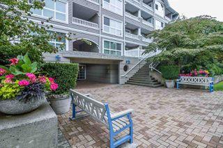 Photo 16: 213 5500 LYNAS Lane in Richmond: Riverdale RI Condo for sale : MLS®# R2099624