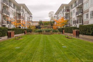 """Photo 14: 412 545 FOSTER Avenue in Coquitlam: Coquitlam West Condo for sale in """"FOSTER WEST"""" : MLS®# R2129823"""