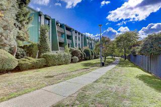 """Photo 18: 216 9202 HORNE Street in Burnaby: Government Road Condo for sale in """"Lougheed Estates II"""" (Burnaby North)  : MLS®# R2214599"""