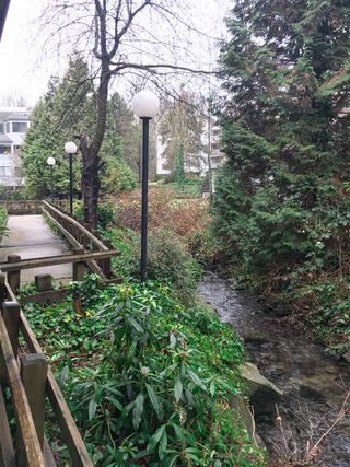 "Photo 14: 402 9880 MANCHESTER Drive in Burnaby: Cariboo Condo for sale in ""BROOKSIDE COURT"" (Burnaby North)  : MLS®# R2229826"