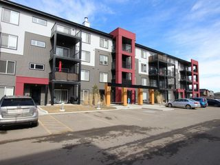 Main Photo: 247 348 Windermere Road in Edmonton: Zone 56 Condo for sale : MLS®# E4105761