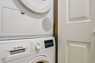 Photo 10: Furnished Rentals