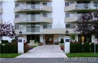 Photo 5: 101 1148 Goodwin St in VICTORIA: OB South Oak Bay Condo Apartment for sale (Oak Bay)  : MLS®# 490596