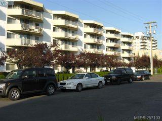 Photo 1: 101 1148 Goodwin St in VICTORIA: OB South Oak Bay Condo Apartment for sale (Oak Bay)  : MLS®# 490596