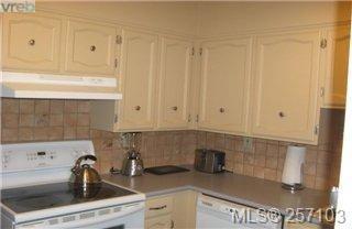 Photo 11: 101 1148 Goodwin St in VICTORIA: OB South Oak Bay Condo Apartment for sale (Oak Bay)  : MLS®# 490596