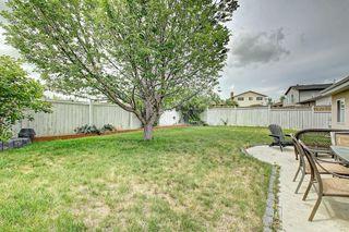 Photo 44: 83 CASTLEFALL Road NE in Calgary: Castleridge Detached for sale : MLS®# C4194335