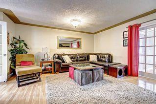 Photo 33: 83 CASTLEFALL Road NE in Calgary: Castleridge Detached for sale : MLS®# C4194335