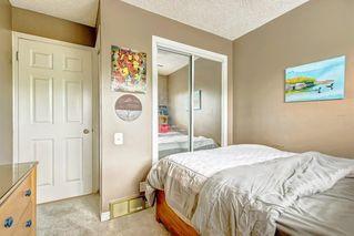 Photo 29: 83 CASTLEFALL Road NE in Calgary: Castleridge Detached for sale : MLS®# C4194335