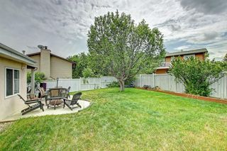 Photo 47: 83 CASTLEFALL Road NE in Calgary: Castleridge Detached for sale : MLS®# C4194335