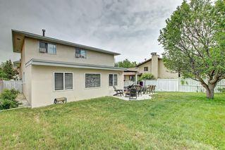Photo 46: 83 CASTLEFALL Road NE in Calgary: Castleridge Detached for sale : MLS®# C4194335