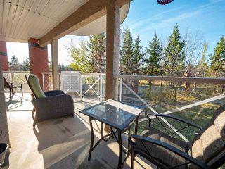 Main Photo: 218 7510 89 Street in Edmonton: Zone 17 Condo for sale : MLS®# E4133134